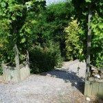 jardin botanique de Briollay
